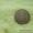 Нитропропен - крупные кристалы #1445727