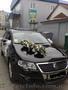 оренда автомобіля на весілля для наречених