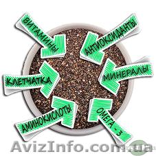 Польза семян ЧИА Владимир-Волынский, Объявление #1204680